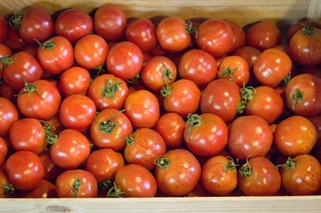 A special variety of tomato, small, rounded and very juicy