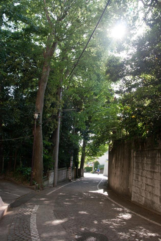 Taoさんの近所