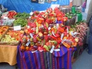 colorful vegetable and travel